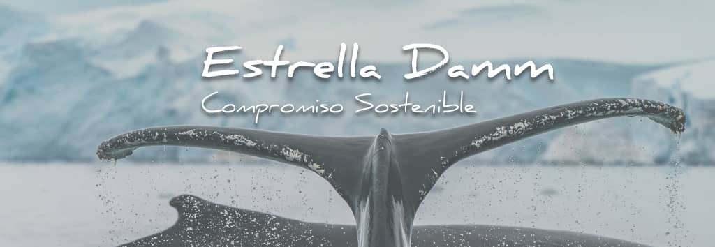 Estrella Damm, Compromiso Sostenible   Photo by Rod Long   Unsplash