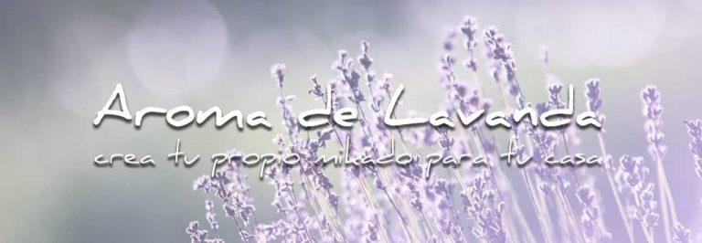 lavander fragrance